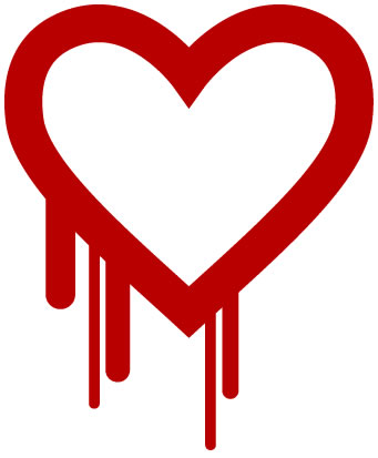 Heartbleed Bug and Credit Repair